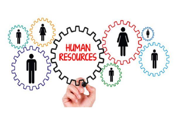 Top 5 phần mềm chấm công online thỗ trợ tốt cho Nhà quản trị 1